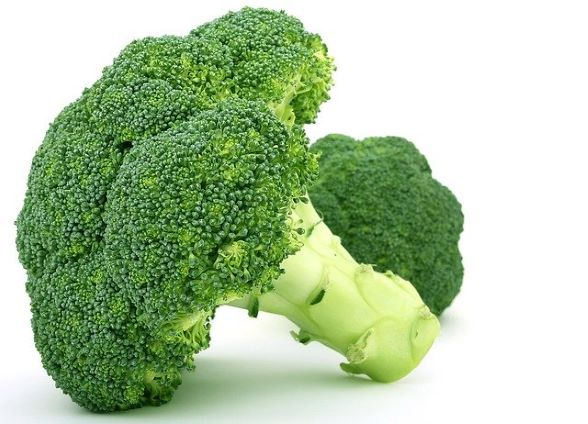 broccoli standing on one side