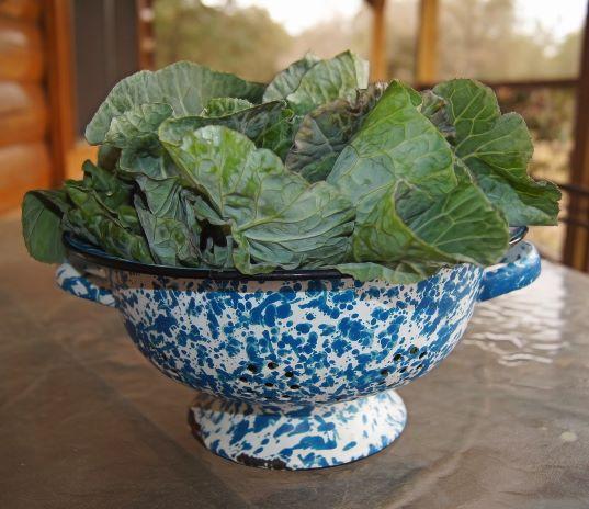 collard greens in porcelain bowl