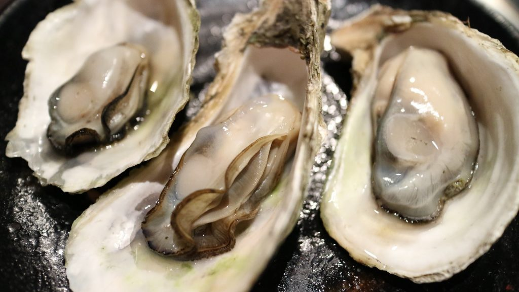 close up picture of oysters still in their shells placed on table as part of keto friendly fish and seafood